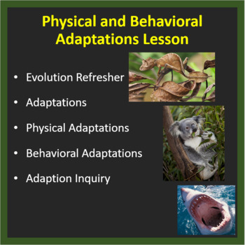 Physical & Behavioral Adaptations: Increasing an organisms chances of survival