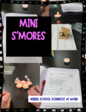 Physical & Chemical Changes: Mini S'mores