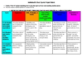 Physical Education Individual/Dual Sports Project Rubric