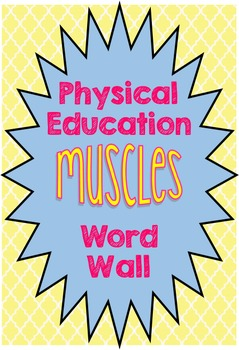 Physical education flash cards resources lesson plans teachers physical education muscles word wall physical education muscles word wall publicscrutiny Image collections