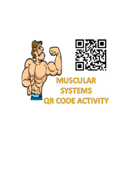 Physical Education: Muscular System QR code activity