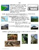 Physical Geography of Central America Reference Sheet and Review
