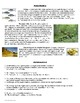 Physical Geography of Eastern Europe Reference Sheet and Review