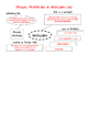 Physical Properties of Elements Graphic Organizers