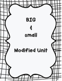 Physical Properties of Matter: Big and Small Mini-Unit
