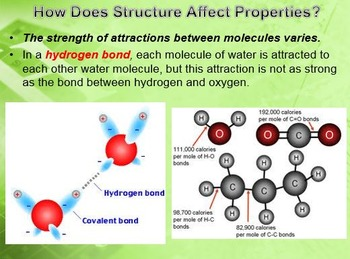 Physical Science: 6.1 The Structure of Matter