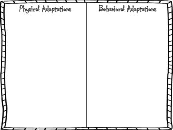 Physical and Behavioral Adaptation Sorting Activity