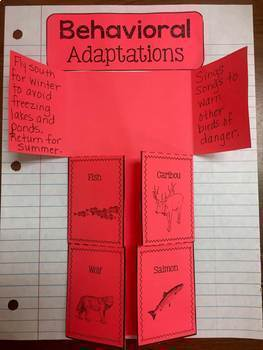 Adaptations: Physical and Behavioral: Mini-Unit