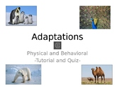 Physical and Behavioral Adaptations Quiz Review