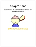 Physical and Behavioral Adaptations Worksheet