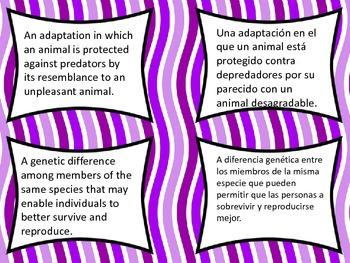 Physical versus behavioral adaptations vocabulary card sort