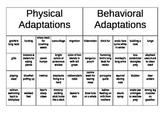 Physical vs. Behavioral Adaptations Sorting
