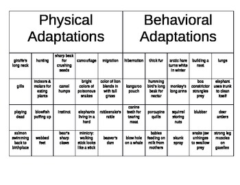 Physical vs. Behavioral Adaptations Sorting by ...