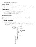 Physics Lab: Centripetal Force