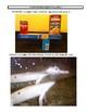 Physics Photo Project