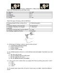 Physics Semester 1 Final Exam