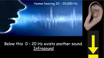 Physics, Sound and Waves, Hearing, Using sound, Comparing waves 7 lesson bundle