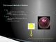 Physics Unit 1 (Intro to Physics) - PPT Presentation