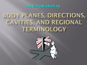 Physiology: Body Planes, Directions, Cavities, & Regional Terminology