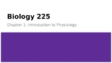 Physiology Chapter 1 Power Point Introduction to Physiology