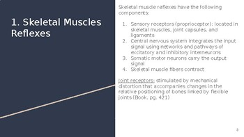 Physiology Chapter 13 Powerpoint Control of Body Movement