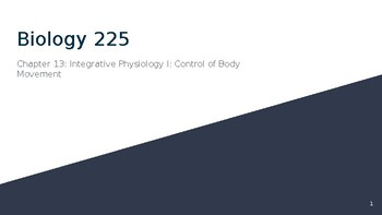 Physiology Chapter 13: Control of Body Movement