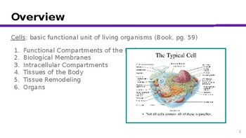 Physiology Chapter 3: Compartmentation