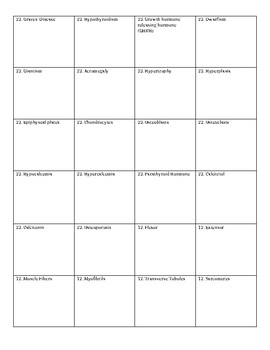 Physiology Flashcards Unit 3 Chapters 7, 23, 12, 13, and 24