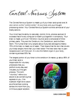 Physiology: The Central Nervous System