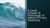 Physiology of Marine Primary Producers: AICE Marine Scienc