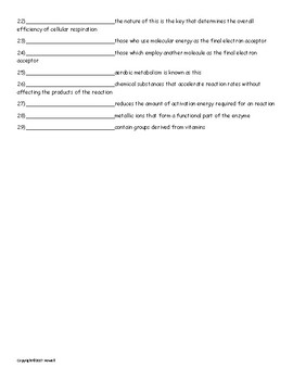 Physiology of the Cell Vocabulary Quiz or Worksheet for Zoology