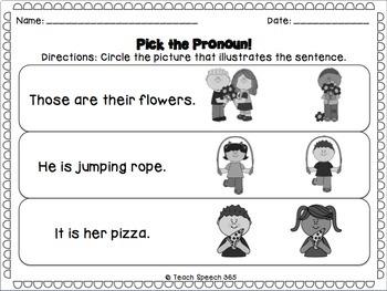 Pick The Pronoun Interactive Book