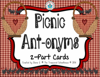 ANTonyms 2-Part Matching Cards - Picnic