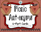 ANTonyms 2-Part Matching Cards - Picnic
