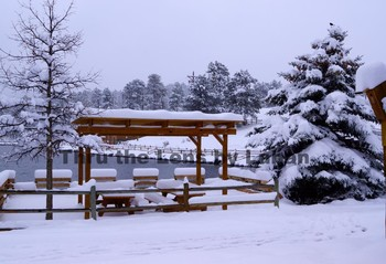 Picnic Area Covered in Snow Stock Photo #148