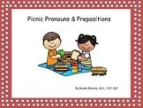 Picnic Pronouns and Prepositions