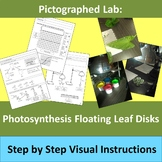 Photosynthesis Lab: Pictographed Floating Leaf Disk Lab