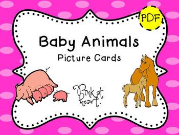 Picture Cards - Baby Animals
