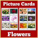 Picture Cards - Types of Flowers