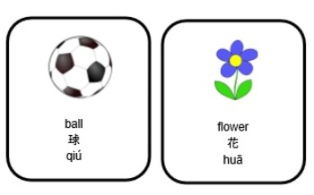 Chinese Picture Cards and Worksheets