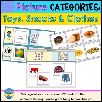 Category Picture Sorting Boards: Language Arts, Special Ed