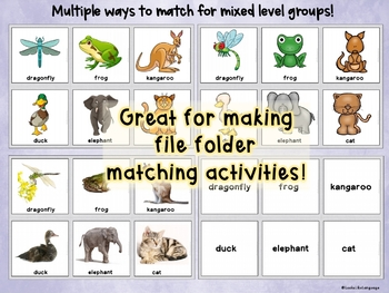 Autism Activities: Category Picture Sorting 2: Animals, Feelings and Sports