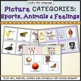 Category Picture Activities for Autism Sorting Animals Feelings and Sports
