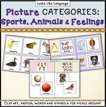 Category Picture Sorting Boards- Language Arts, Special Ed