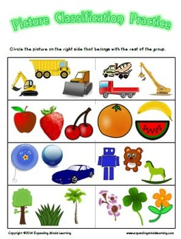 Picture Classification Practice