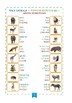 Picture Dictionary in 3 languages - ENGLISH-RUSSIAN-UZBEK