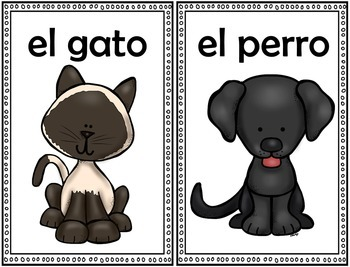 Picture Nouns: Flash Cards {SPANISH VERSION}
