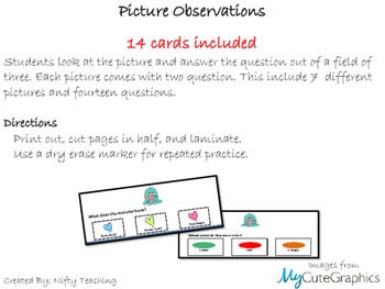 Picture Observations and Answering Questions