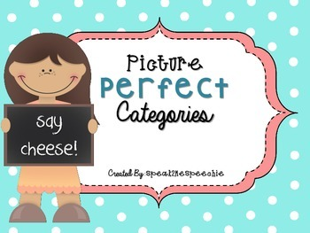 Picture Perfect Categories: A Speech Therapy Activity