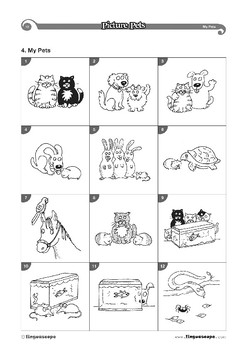 Picture Pets - French
